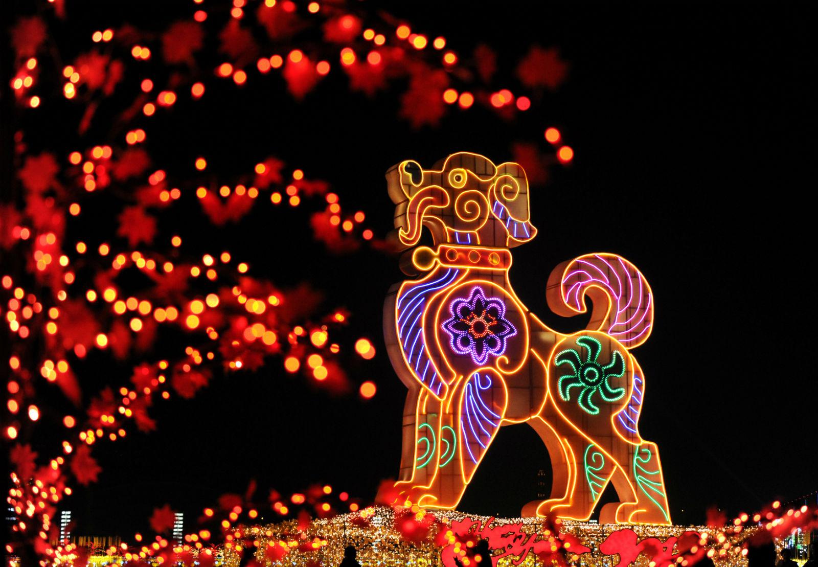 Новый год по китайски число день