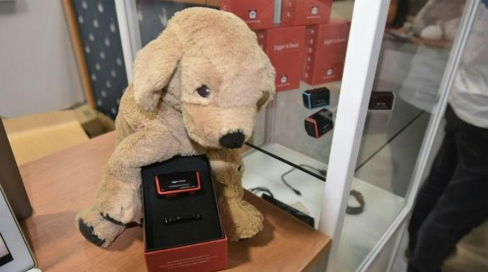 Man's best friend goes high tech at gadget fest