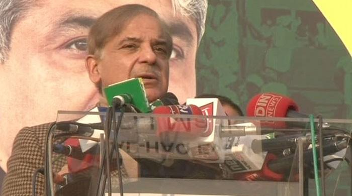 'Political clowns' from across Pakistan gathered on Mall Road: Shehbaz Sharif