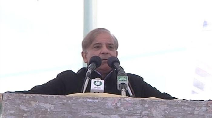 CM Punjab criticises Zardari, Imran during Layyah address