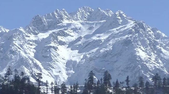 Kalam – a thing of beauty