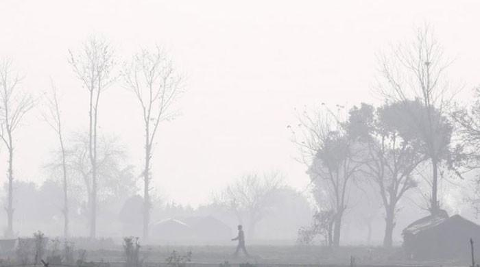 India's $230 million plan to stop crop burning that pollutes Delhi falls short of estimates