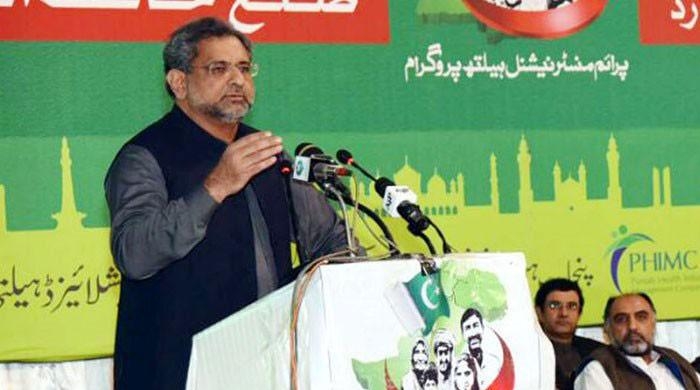 Calling elected representatives mafia, thieves not acceptable: PM Abbasi