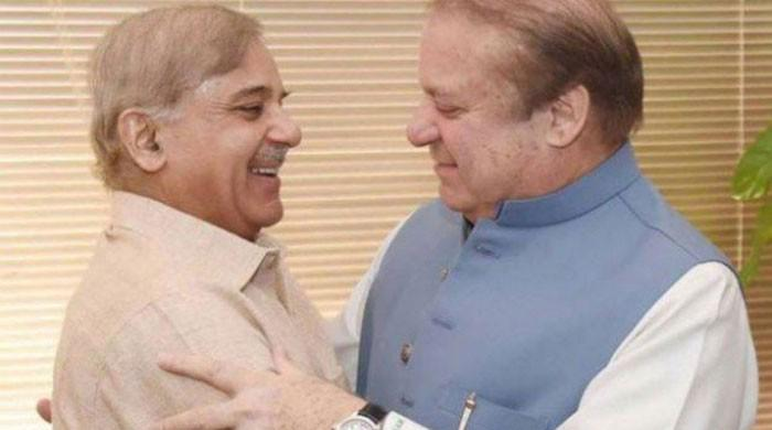 Shehbaz Sharif to be made interim PML-N president: sources