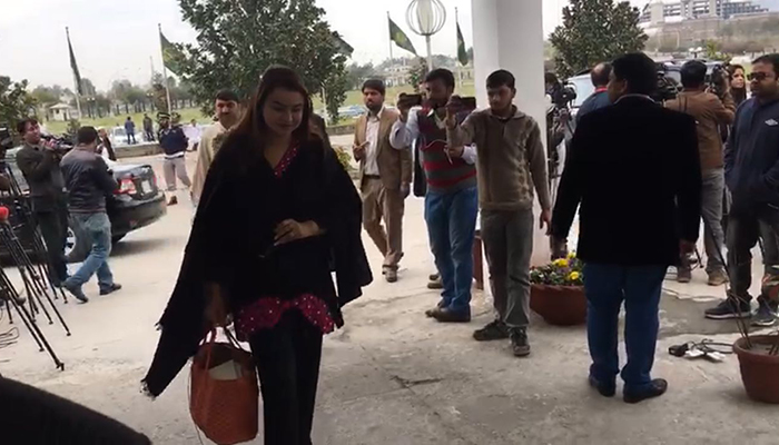 Maiza Hameed arriving at the National Assembly