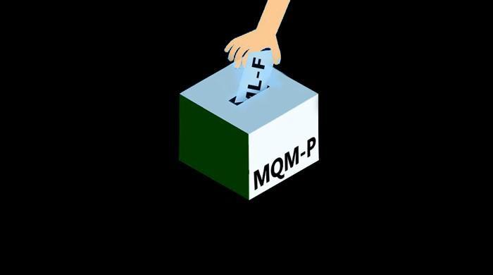 Explainer: How 10 PML-F votes helped one MQM-P senator retain his seat