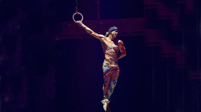 Cirque du Soleil aerialist falls to his death