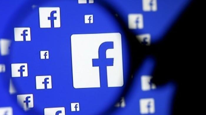 Facebook, British political consultancy sued in data storm