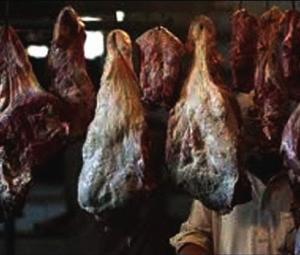 Top food regulatory body arrests two after surprise inspection in Peshawar