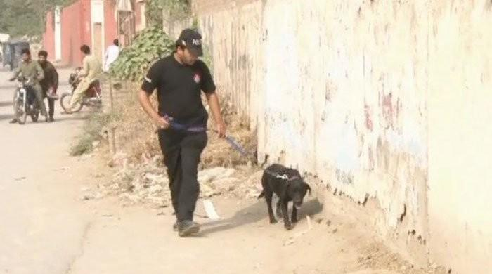 18 KP police sniffer dogs die within four years