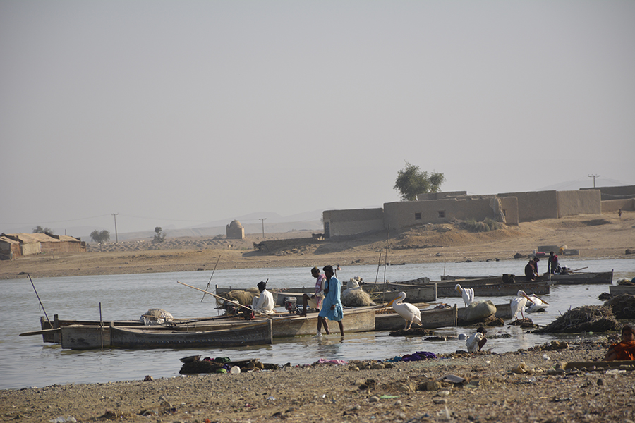 In the past there were several floating boat houses in the Manchar Lake, but due to pollution, fishermen moved to land. Photos by Amar Guriro