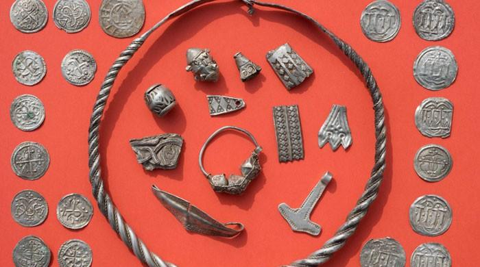 Boy unearths legendary Danish king´s trove in Germany