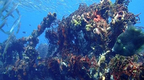 Divers discover years old shipwreck near Gaddani