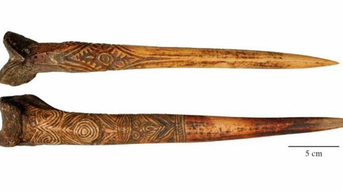 In New Guinea, human thigh bone daggers were hot property: study