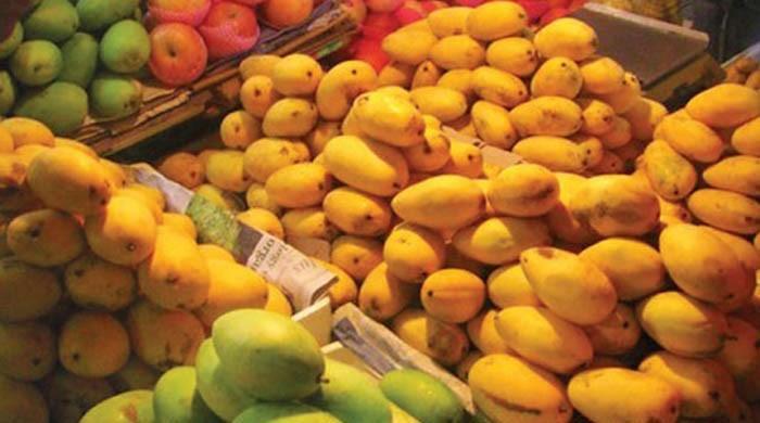 Get ready for mango season