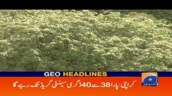 Geo Headlines - 10 AM - 24 May 2018