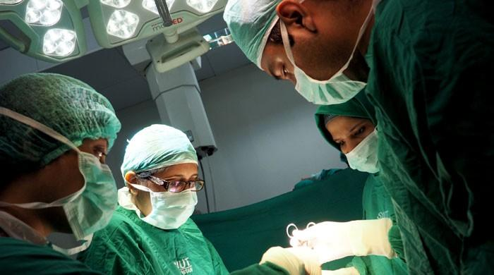 Seven successful liver transplants done at SIUT