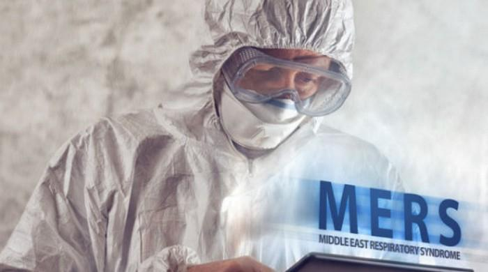 Saudi MERS outbreaks killed 23 over four months: WHO