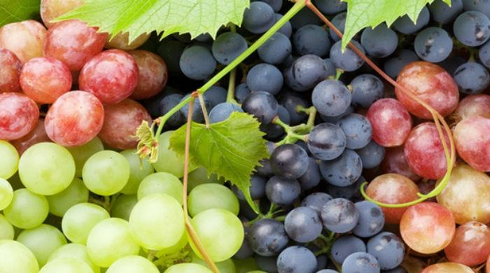 Sweet remedy: Eating grapes may help prevent tooth decay