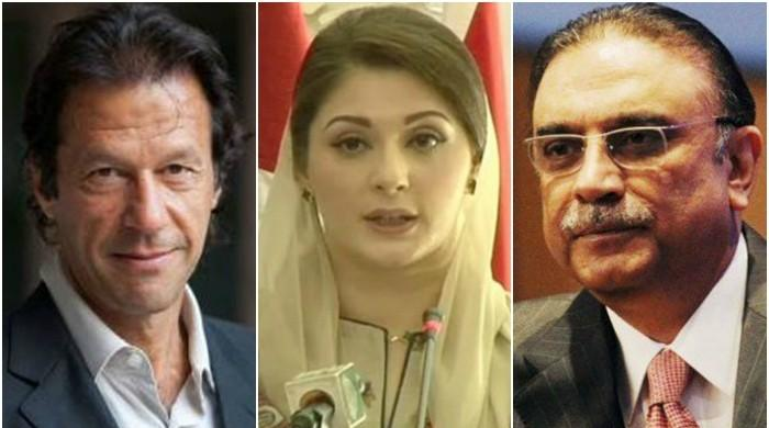 ECP makes assets details of Maryam, Imran, Zardari public