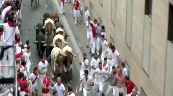 Traditional race in Spain; fierce bulls chase people