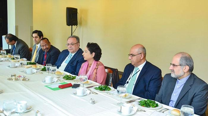 OIC expresses solidarity with people of IoK: Maleeha Lodhi