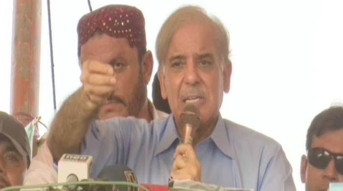 Shehbaz urges masses to defeat candidates with 'bat, arrow, jeep' symbols