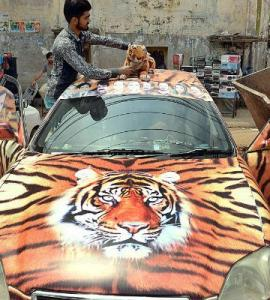 Vroom-vroom! Enthusiasts give their vehicles political makeovers