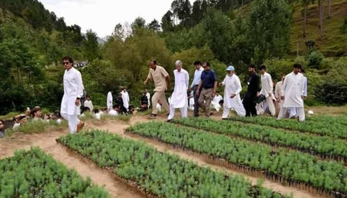 File Photo Of Imran Khan Touring A Nursery In Kp Reuters