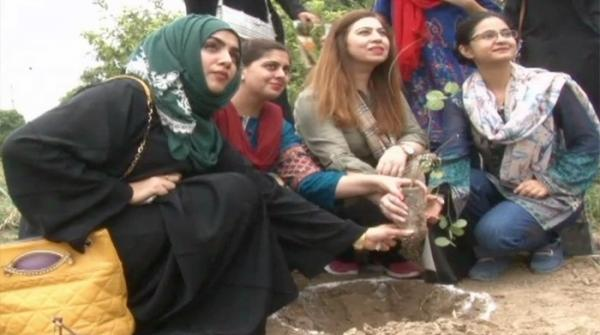 Students in Lahore determined for tree-planting campaign on Aug 14