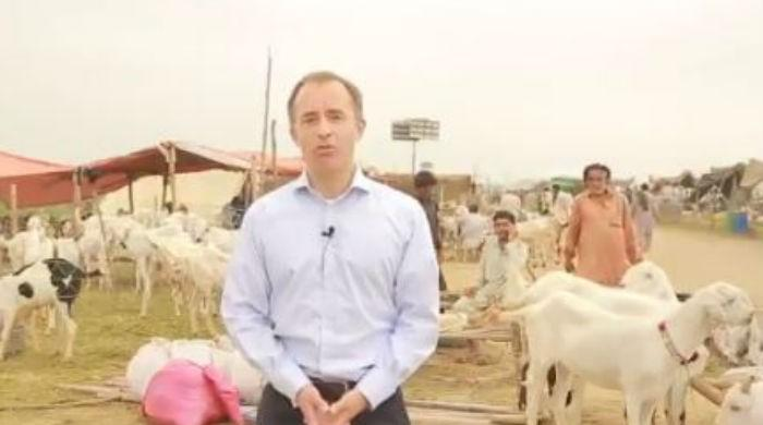 British diplomat wishes 'heartiest Eid' to all