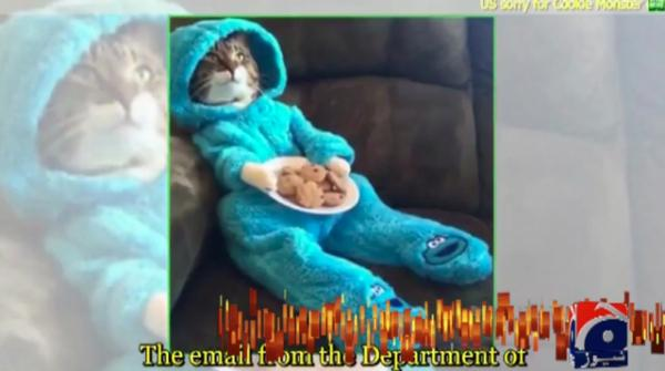 US embassy in Australia accidentally sends Cookie Monster cat invitation