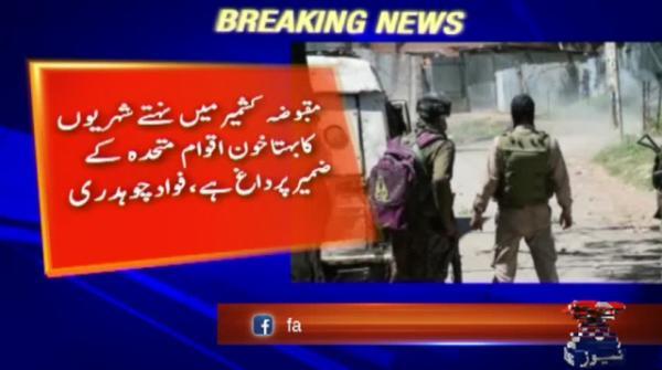 Bloodshed of Kashmiris a 'blot on UN's conscience': info minister