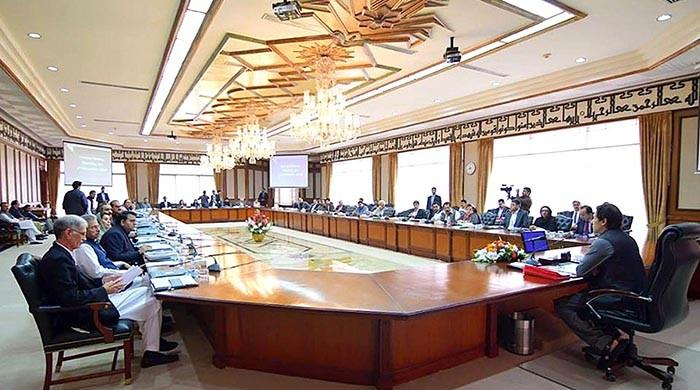 PM forms committee to hold talks with protesters