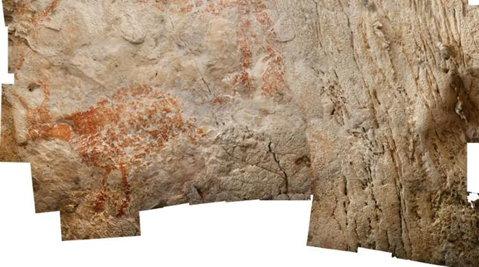 Old Master? Cave paintings from 40,000 years ago are world's earliest figurative art