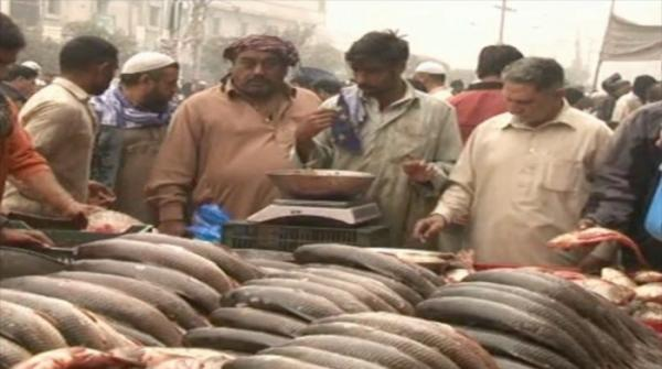 Lahore's Machli Mandi attracts fish-lovers as winter arrives