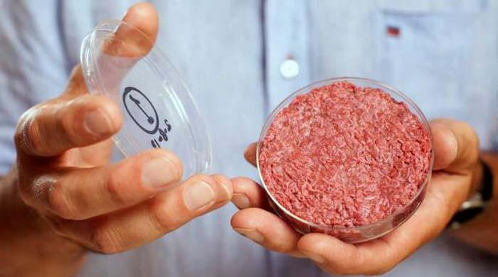US paves way to get 'lab meat' on plates