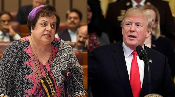 Trump's statement lesson for Pakistani leaders who kept appeasing US