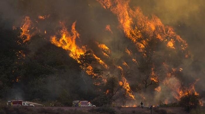 California wildfire pollution paralyses San Francisco region