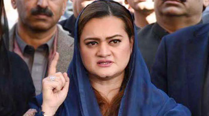 Aleema Khan given NRO because Imran behind her theft: Marriyum