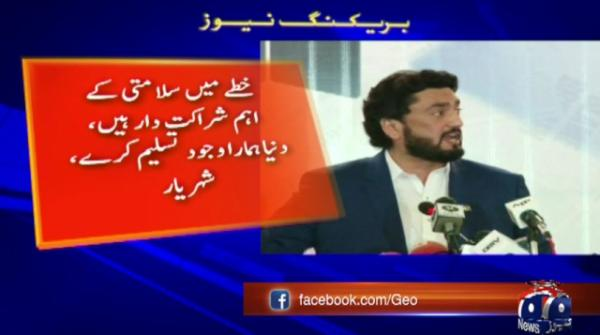 India has strengthened its influence on Afghanistan: Shehryar Afridi