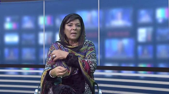 Aleema Khan did not seek amnesty on Dubai property, SC told