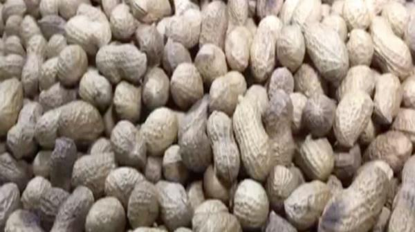 Demand spikes for peanuts as winter approaches