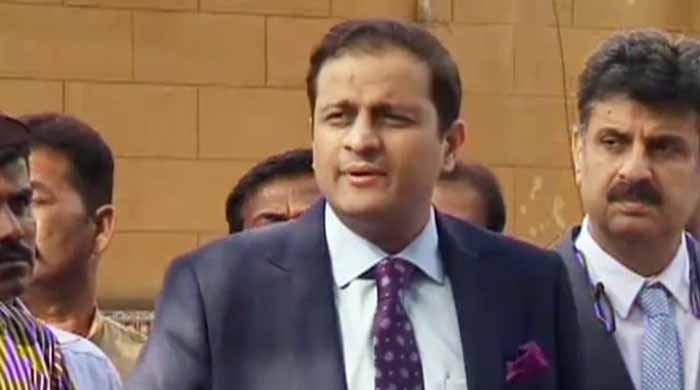 Sindh governor is not apex committee member: Murtaza Wahab