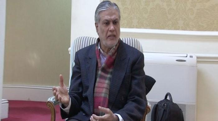PTI govt focused on political victimisation instead of economy, alleges Dar