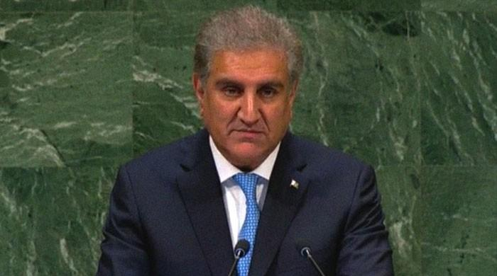 Indian forces on 'killing spree' of Kashmiris in IoK, says FM Qureshi