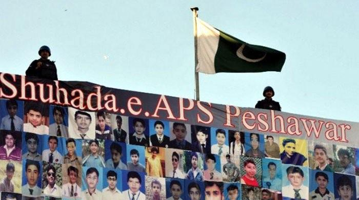 The APS probe: Over a 100 statements recorded