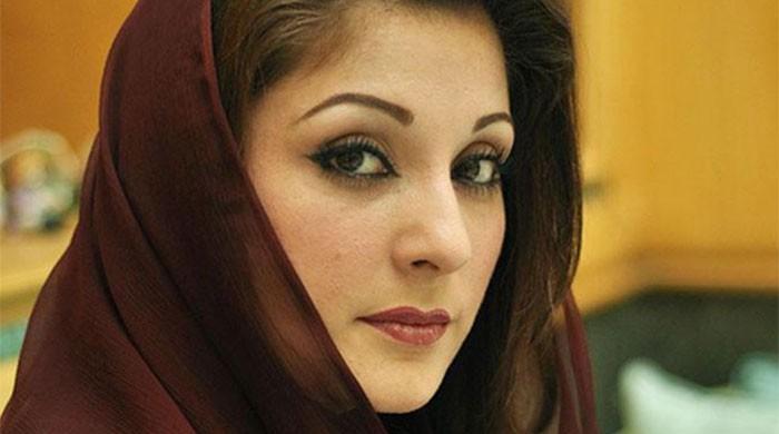 Maryam Nawaz can take the party forward: Raja Zafarul Haq