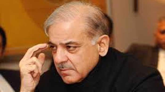 Won't allow govt to take sigh of relief before real facts on Sahiwal killings are told, says Shehbaz