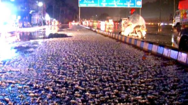 Rain, hailstorm lash Lahore